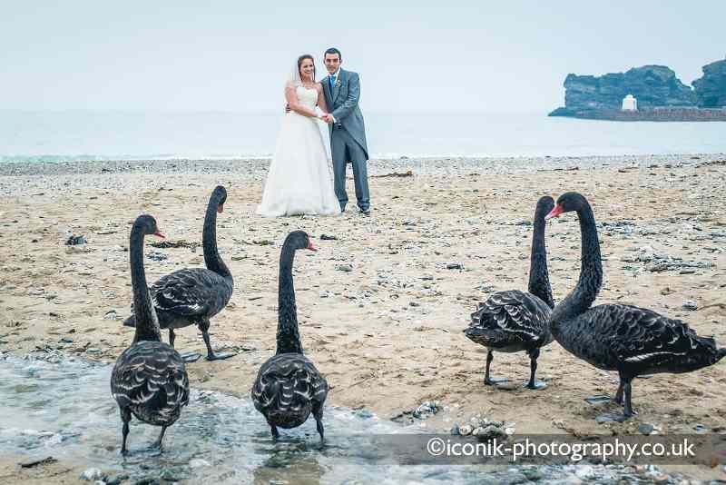 Wedding Photographers in Cornwall on-Portreath-Beach-wiith Black Swans